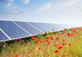 Rendement zonnepanelen opbrengst